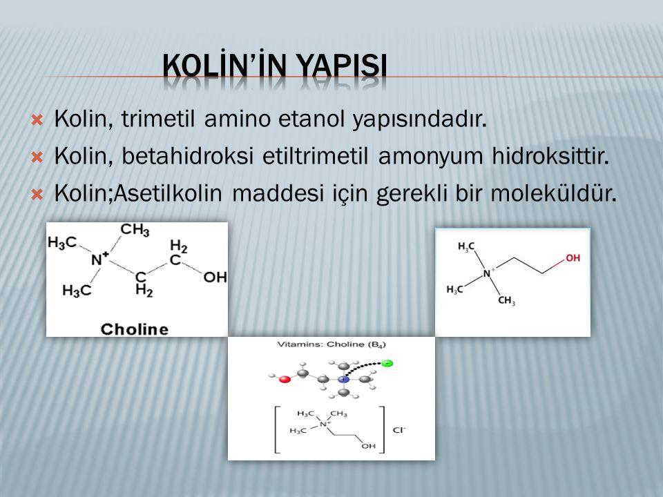  Kolin, trimetil amino etanol yapısındadır.