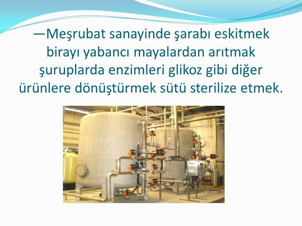 —Meşrubat sanayinde şarabı eskitmek birayı yabancı mayalardan arıtmak şuruplarda enzimleri glikoz gibi diğer ürünlere dönüştürmek sütü sterilize etmek