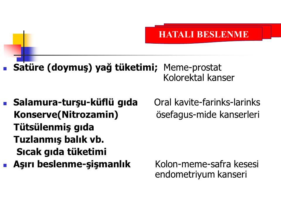 Satüre (doymuş) yağ tüketimi; Meme-prostat Kolorektal kanser Salamura-turşu-küflü gıda Oral kavite-farinks-larinks Konserve(Nitrozamin) ösefagus-mide