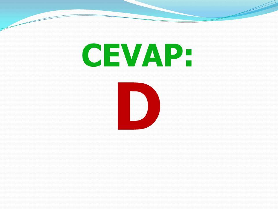 30)Paspartu yolculuğa çıkarken aşağıdakilerden hangisini açık unutmuştur? A) Işıkları B) Sokak kapısını C) Tüp gazını D) Hiçbiri