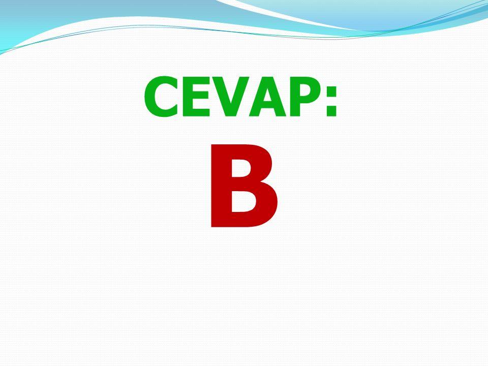 """3. """"Havaya Uçan At """" masalında padişah olaylardan sonra atı ne yapıyor? A) Saraya alıyor. B) Parçalayıp, yaktırıyor. C) Oğluna hediye ediyor. D) Serbe"""