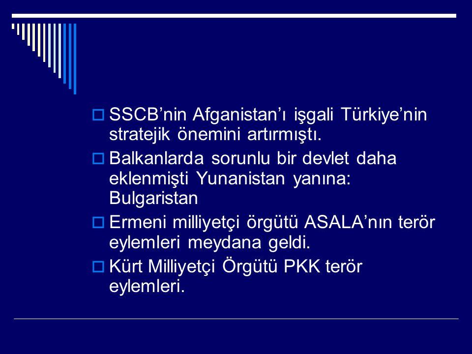  SSCB'nin Afganistan'ı işgali Türkiye'nin stratejik önemini artırmıştı.