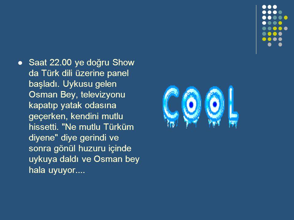 Saat 22.00 ye doğru Show da Türk dili üzerine panel başladı.