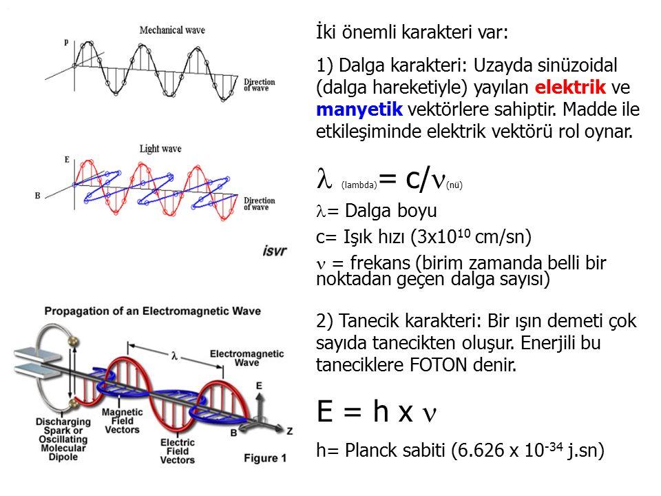 İki önemli karakteri var: 1) Dalga karakteri: Uzayda sinüzoidal (dalga hareketiyle) yayılan elektrik ve manyetik vektörlere sahiptir. Madde ile etkile