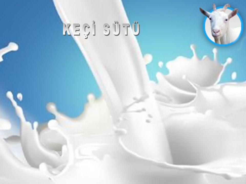 Keçi sütü zengin bir selenyum kaynağıdır.