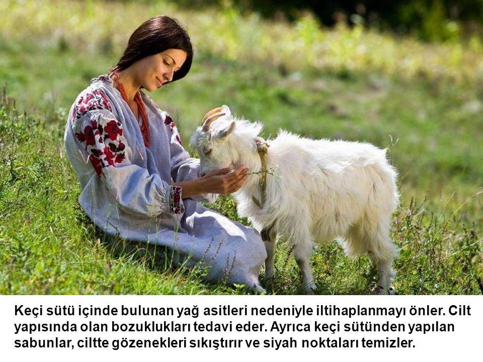Keçi sütü zengin bir selenyum kaynağıdır. Selenyum, kansere karşı korunmada çok faydalı olduğundan kanser engelleyicidir. Bağırsaklarda zararlı bakter