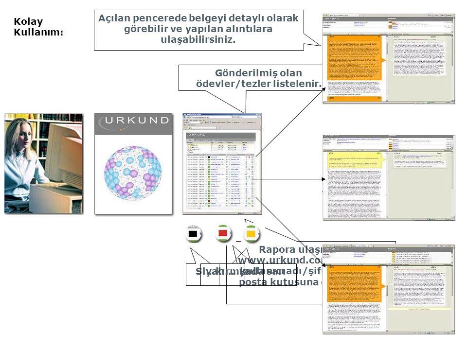 Rapora ulaşmak için www.urkund.com'a girilir ve kullanıcı adı/şifre ile kişisel posta kutusuna giriş yapılır.