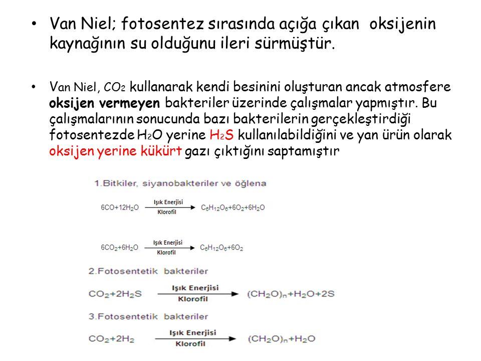 Van Niel; fotosentez sırasında açığa çıkan oksijenin kaynağının su olduğunu ileri sürmüştür.