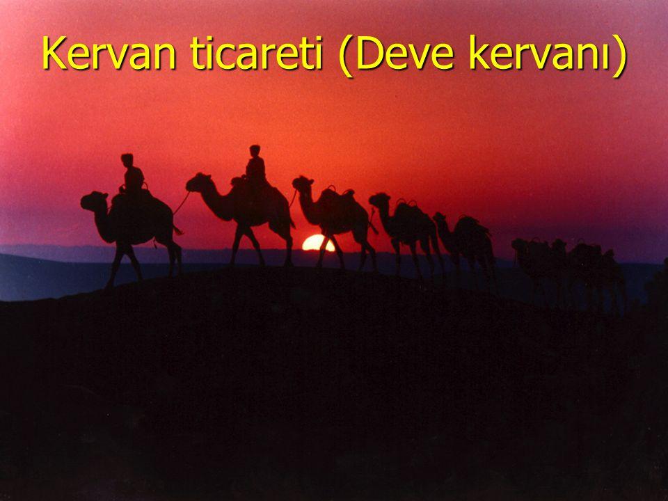 www.sunuindir.com Kervan ticareti (Deve kervanı)