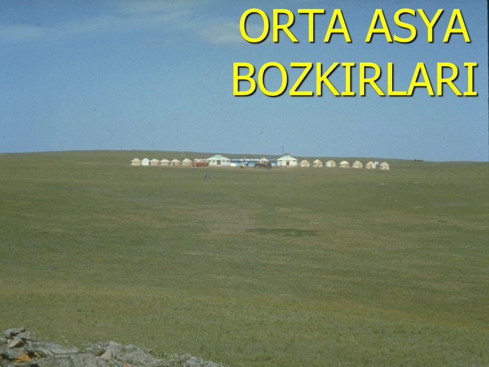 www.sunuindir.com ORTA ASYA BOZKIRLARI