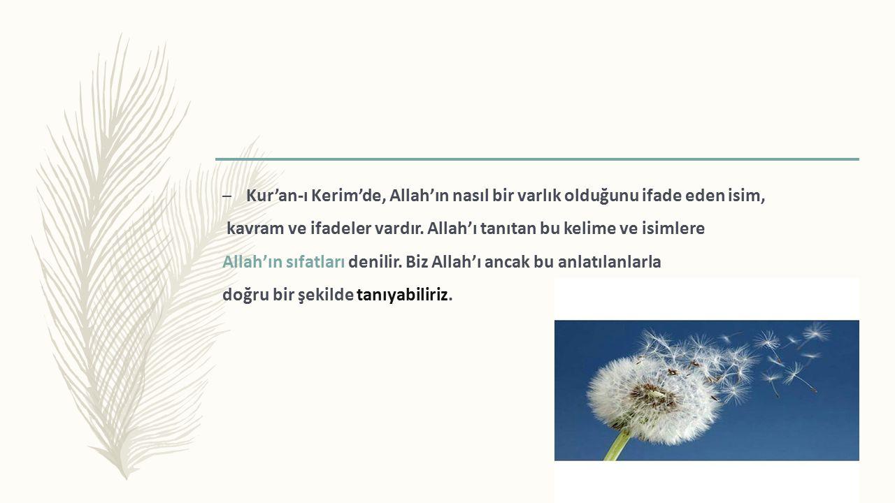 – Kur'an-ı Kerim'de, Allah'ın nasıl bir varlık olduğunu ifade eden isim, kavram ve ifadeler vardır.