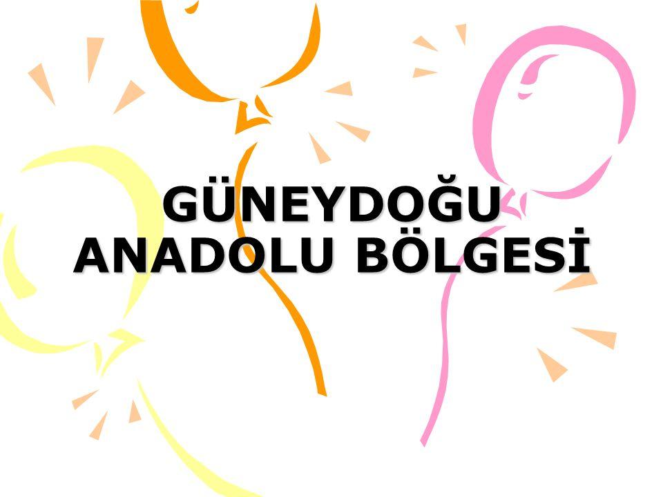 GENEL ÖZELLİKLER Bölge Türkiye'nin güneydoğu kesimini oluşturur.