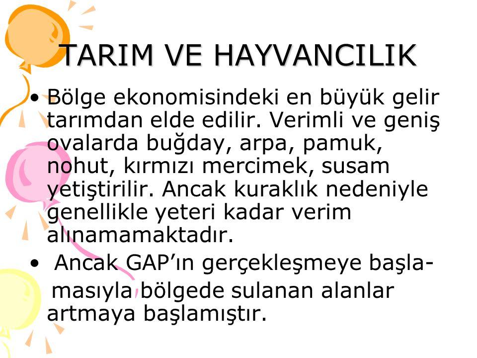 MADENLER Bölgedeki en önemli maden Diyarbakır, Adıyaman, Siirt ved Batman dolaylarındaki yataklardan çıkarılan petroldür.