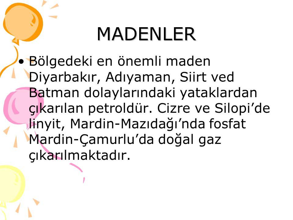 MADENLER Bölgedeki en önemli maden Diyarbakır, Adıyaman, Siirt ved Batman dolaylarındaki yataklardan çıkarılan petroldür. Cizre ve Silopi'de linyit, M