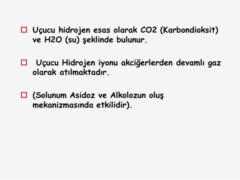  Uçucu hidrojen esas olarak CO2 (Karbondioksit) ve H2O (su) şeklinde bulunur.  Uçucu Hidrojen iyonu akciğerlerden devamlı gaz olarak atılmaktadır. 