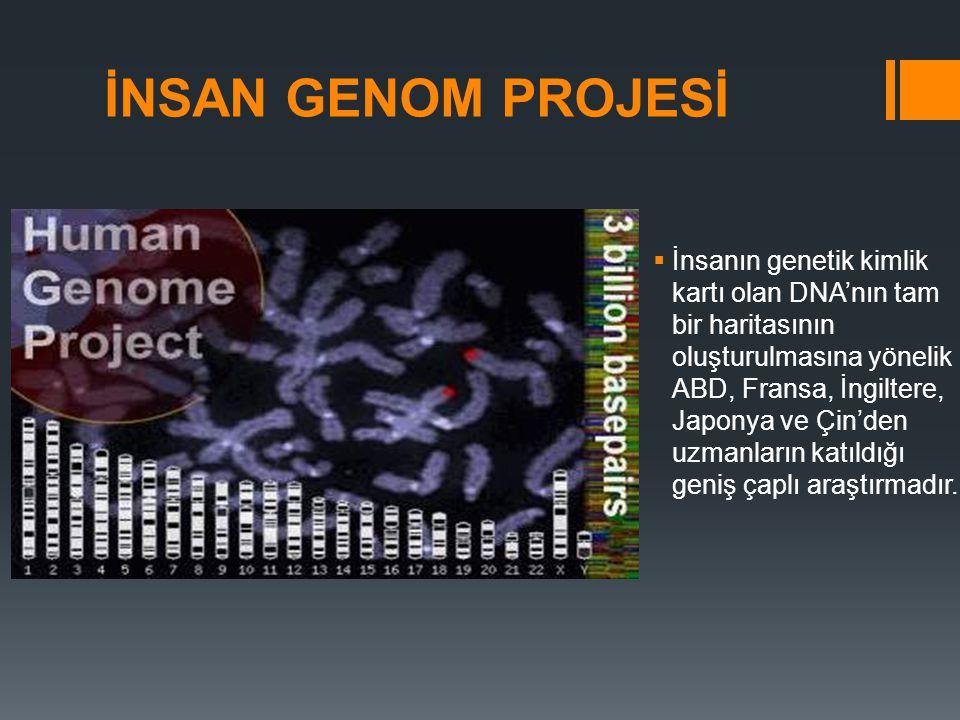 İNSAN GENOM PROJESİ  İnsanın genetik kimlik kartı olan DNA'nın tam bir haritasının oluşturulmasına yönelik ABD, Fransa, İngiltere, Japonya ve Çin'den