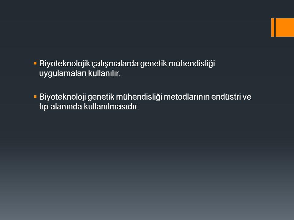  Biyoteknolojik çalışmalarda genetik mühendisliği uygulamaları kullanılır.  Biyoteknoloji genetik mühendisliği metodlarının endüstri ve tıp alanında