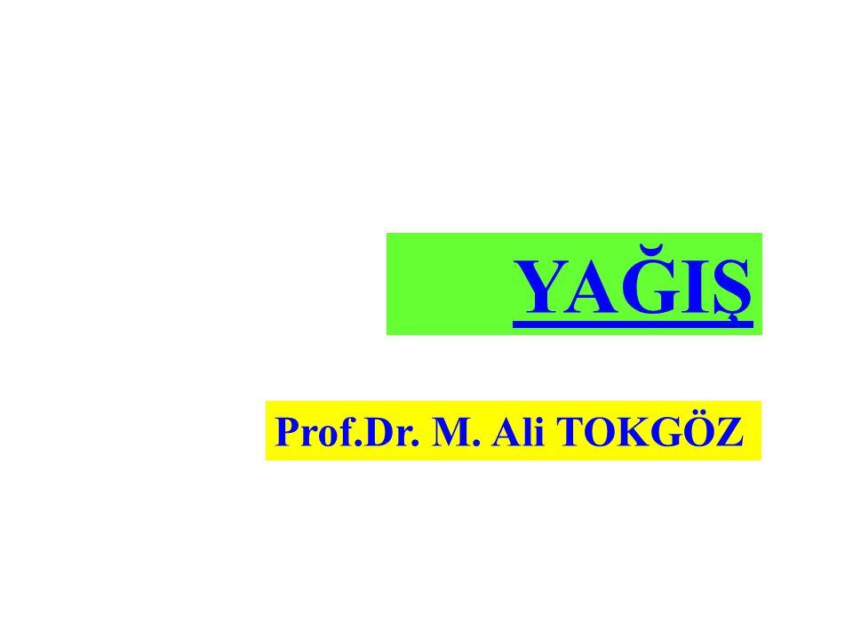 YAĞIŞ Prof.Dr. M. Ali TOKGÖZ