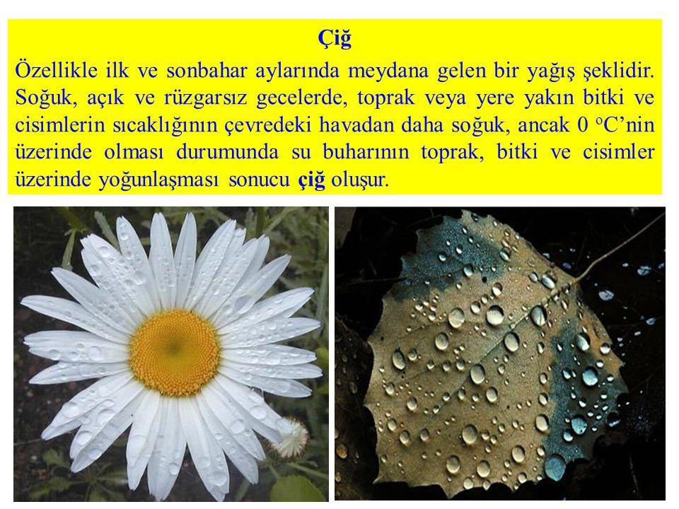 Çiğ Özellikle ilk ve sonbahar aylarında meydana gelen bir yağış şeklidir. Soğuk, açık ve rüzgarsız gecelerde, toprak veya yere yakın bitki ve cisimler