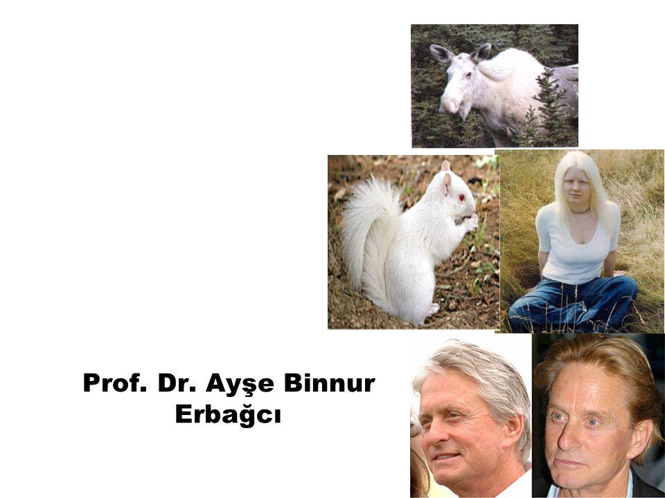 Amino Asit Metabolizması Bozuklukları Prof. Dr. Ayşe Binnur Erbağcı