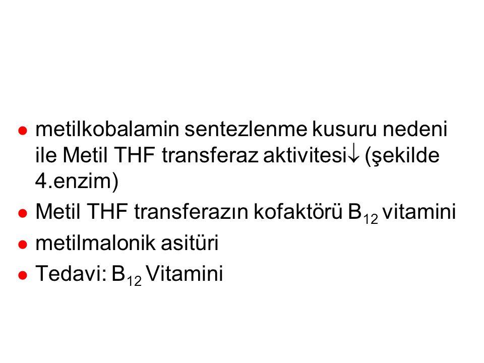 metilen THF redüktaz (homosistinüri tip 2) l metilen THF redüktaz (şekilde 9. enzim) l Nadir görülür l Plazma metiyonin normal l İdrar homosistin artm