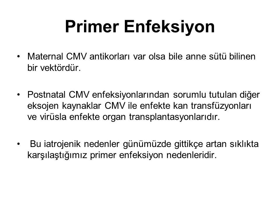Primer Enfeksiyon Maternal CMV antikorları var olsa bile anne sütü bilinen bir vektördür. Postnatal CMV enfeksiyonlarından sorumlu tutulan diğer eksoj