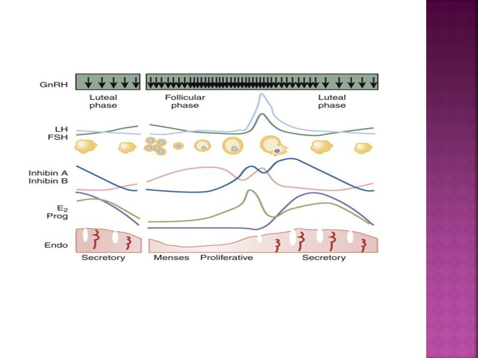  2010,Long agonist supresyonu, 270 hastanın hepsi 100 mg/gün IM P, Grup A-Östrojen almayanlar, Grup B-ek olarak oral estradiol valerat 6 mg/gün Grup C-ek olarak vajinal estradiol valerat 6 mg/gün Grup A ve B arasında gebelik oranları arasında fark bulunamamıştır.Ancak vajinal estradiol valerat alanlarda daha yüksek gebelik oranları saptanmıştır.