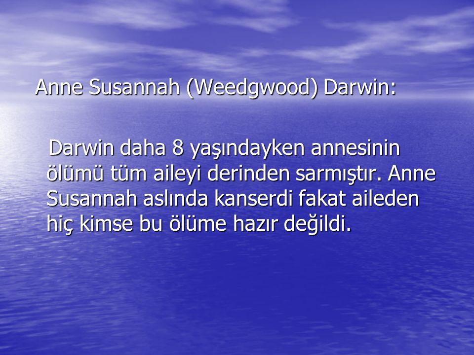 Anne Susannah (Weedgwood) Darwin: Anne Susannah (Weedgwood) Darwin: Darwin daha 8 yaşındayken annesinin ölümü tüm aileyi derinden sarmıştır. Anne Susa