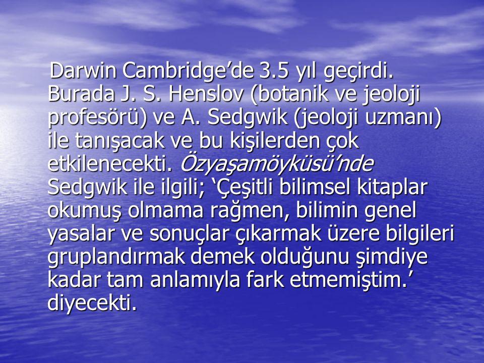 Darwin Cambridge'de 3.5 yıl geçirdi. Burada J. S. Henslov (botanik ve jeoloji profesörü) ve A. Sedgwik (jeoloji uzmanı) ile tanışacak ve bu kişilerden
