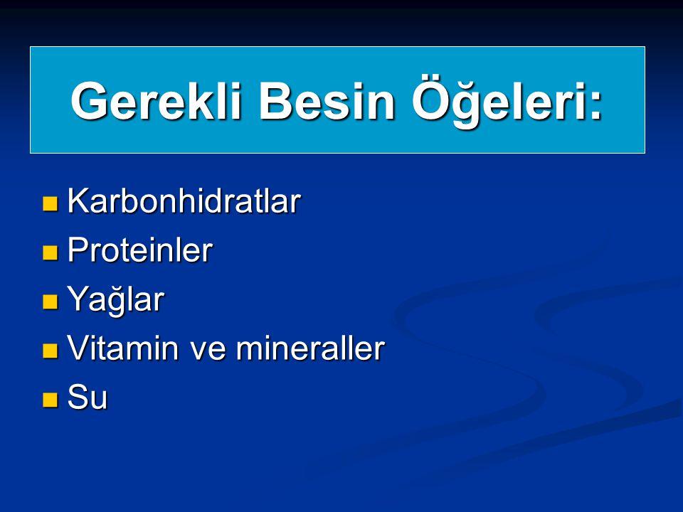 Gerekli Besin Öğeleri: Karbonhidratlar Karbonhidratlar Proteinler Proteinler Yağlar Yağlar Vitamin ve mineraller Vitamin ve mineraller Su Su