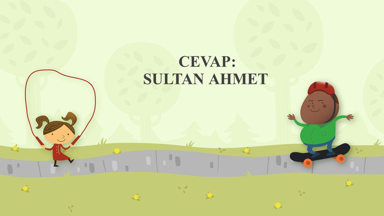 CEVAP: SULTAN AHMET