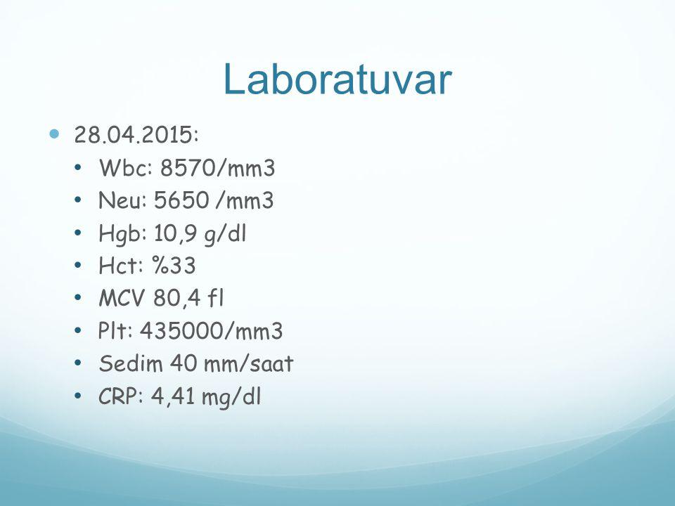 Laboratuvar 28.04.2015: Wbc: 8570/mm3 Neu: 5650 /mm3 Hgb: 10,9 g/dl Hct: %33 MCV 80,4 fl Plt: 435000/mm3 Sedim 40 mm/saat CRP: 4,41 mg/dl