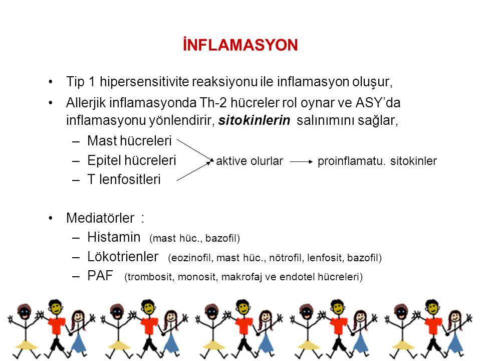 İNFLAMASYON Histamin : Erken allerjik reaksiyon Bronkokonstriksiyon Vasodilatasyon Ödem Mukus sekresyonunda artış Sitokinler : Geç faz allerjik yanıt İnflamasyon (Vasküler yataktan çıkan hücreler bronş mukozasını infiltre ederler.