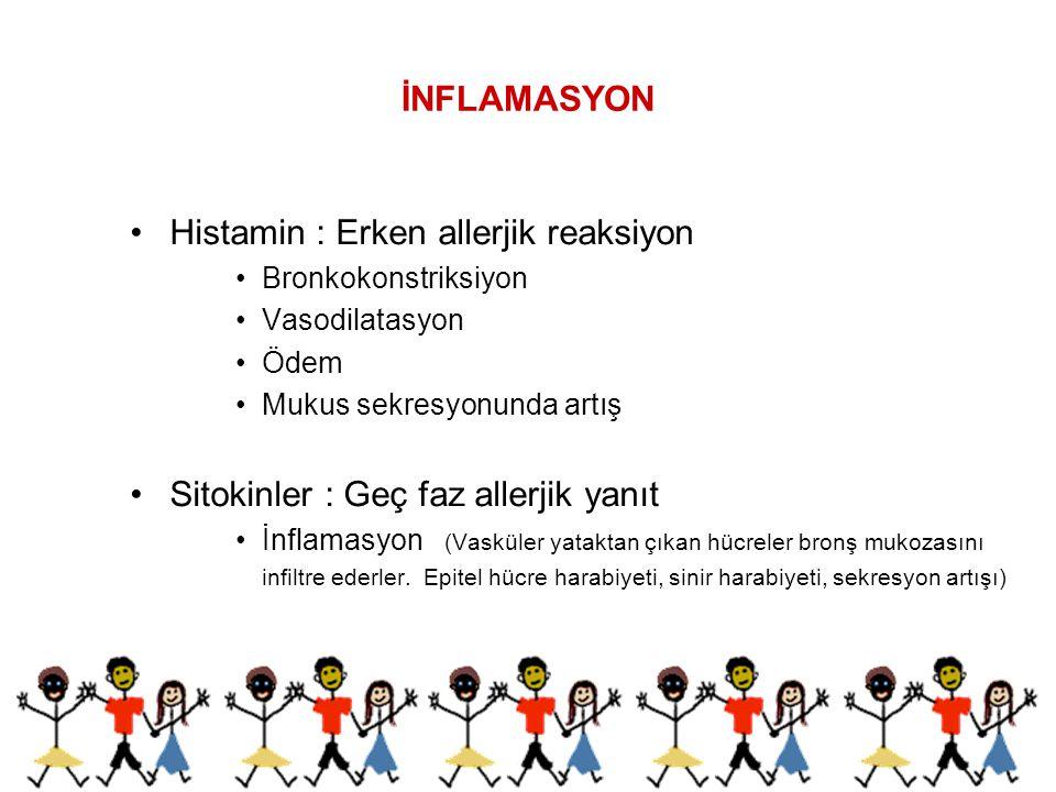 İNFLAMASYON Histamin : Erken allerjik reaksiyon Bronkokonstriksiyon Vasodilatasyon Ödem Mukus sekresyonunda artış Sitokinler : Geç faz allerjik yanıt
