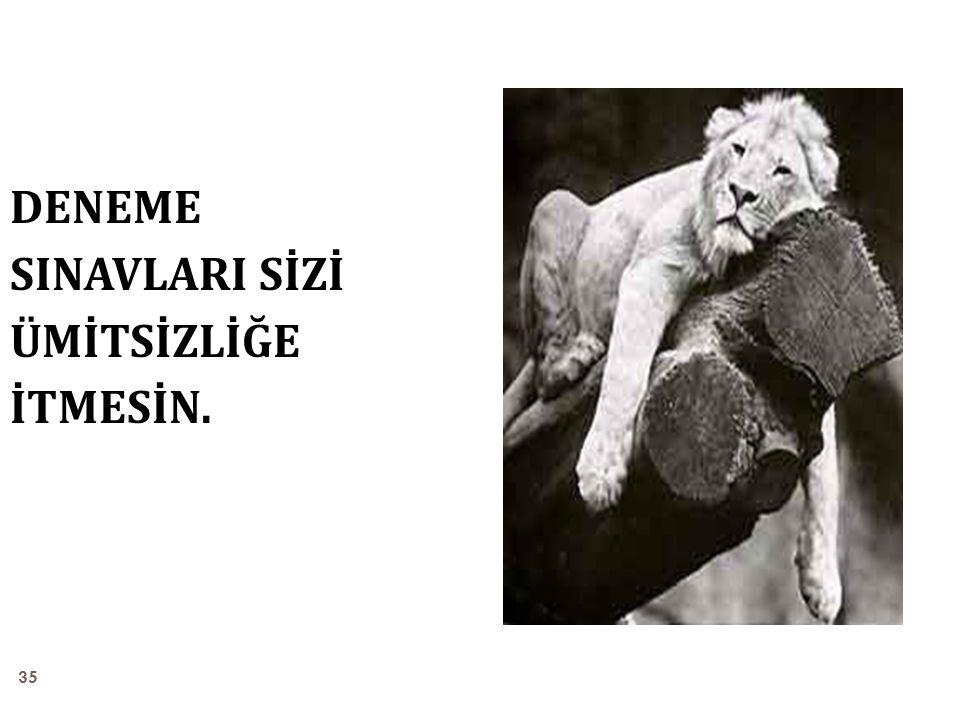 35 DENEME SINAVLARI SİZİ ÜMİTSİZLİĞE İTMESİN.