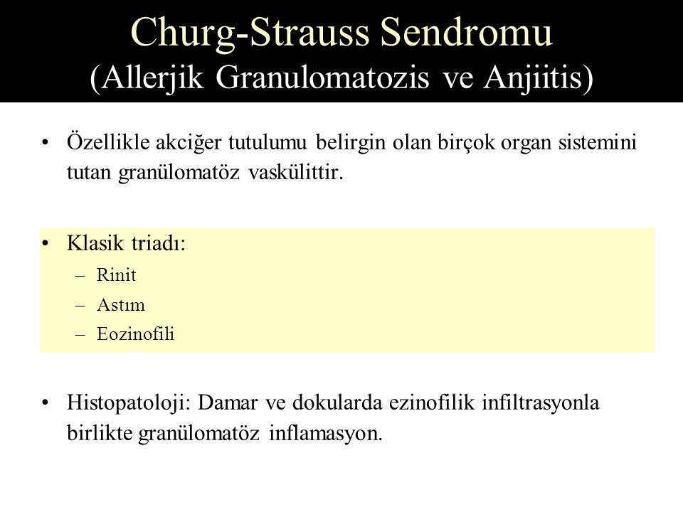 Özellikle akciğer tutulumu belirgin olan birçok organ sistemini tutan granülomatöz vaskülittir.
