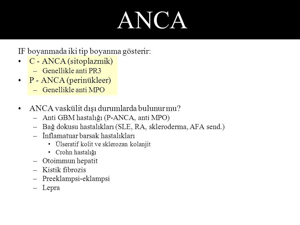 IF boyanmada iki tip boyanma gösterir: C - ANCA (sitoplazmik) –Genellikle anti PR3 P - ANCA (perinükleer) –Genellikle anti MPO ANCA vaskülit dışı durumlarda bulunur mu.