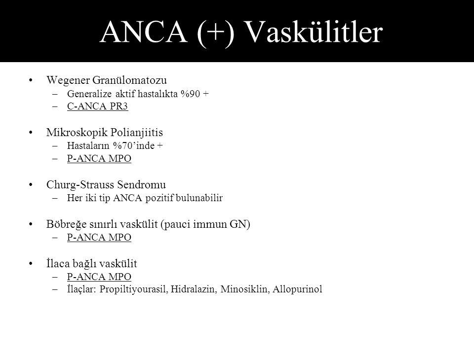 ANCA (+) Vaskülitler Wegener Granülomatozu –Generalize aktif hastalıkta %90 + –C-ANCA PR3 Mikroskopik Polianjiitis –Hastaların %70'inde + –P-ANCA MPO Churg-Strauss Sendromu –Her iki tip ANCA pozitif bulunabilir Böbreğe sınırlı vaskülit (pauci immun GN) –P-ANCA MPO İlaca bağlı vaskülit –P-ANCA MPO –İlaçlar: Propiltiyourasil, Hidralazin, Minosiklin, Allopurinol