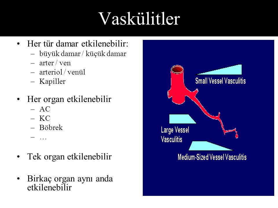 Vaskülitler Her tür damar etkilenebilir: –büyük damar / küçük damar –arter / ven –arteriol / venül –Kapiller Her organ etkilenebilir –AC –KC –Böbrek –… Tek organ etkilenebilir Birkaç organ aynı anda etkilenebilir