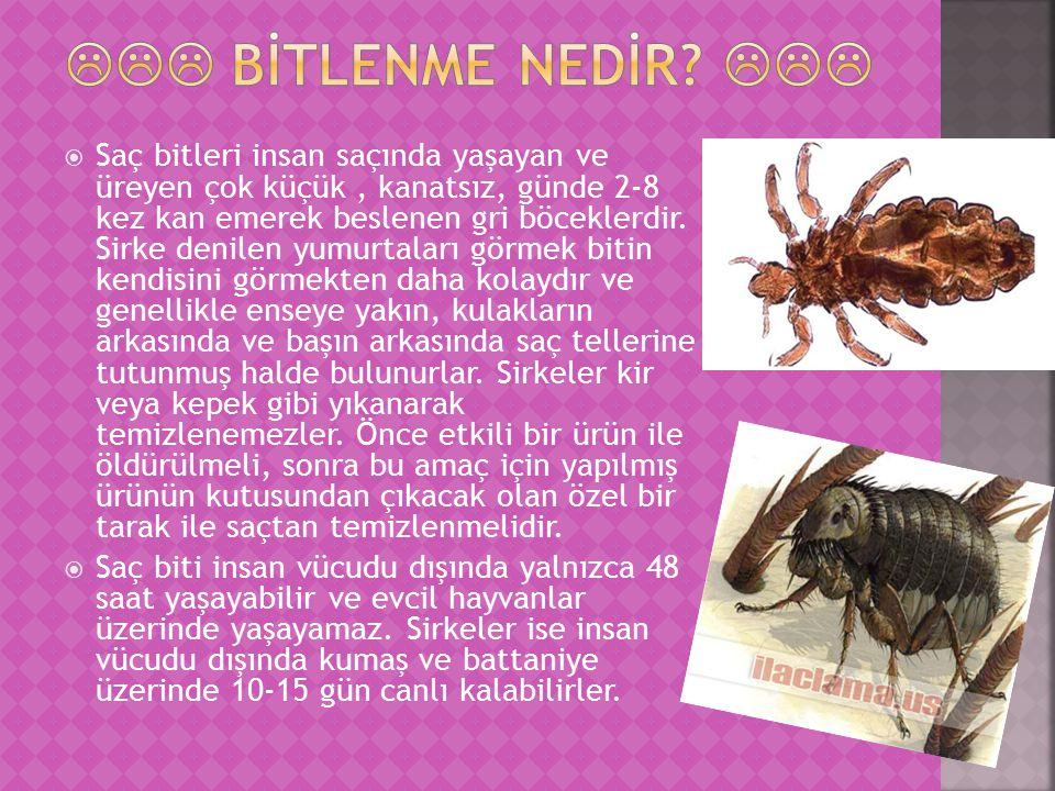  Saç bitleri insan saçında yaşayan ve üreyen çok küçük, kanatsız, günde 2-8 kez kan emerek beslenen gri böceklerdir.