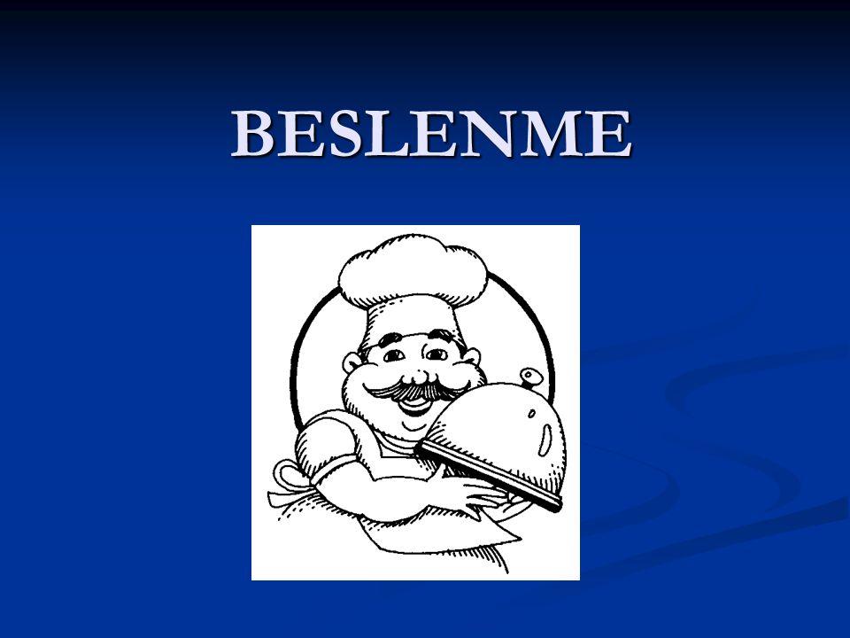 BESLENME