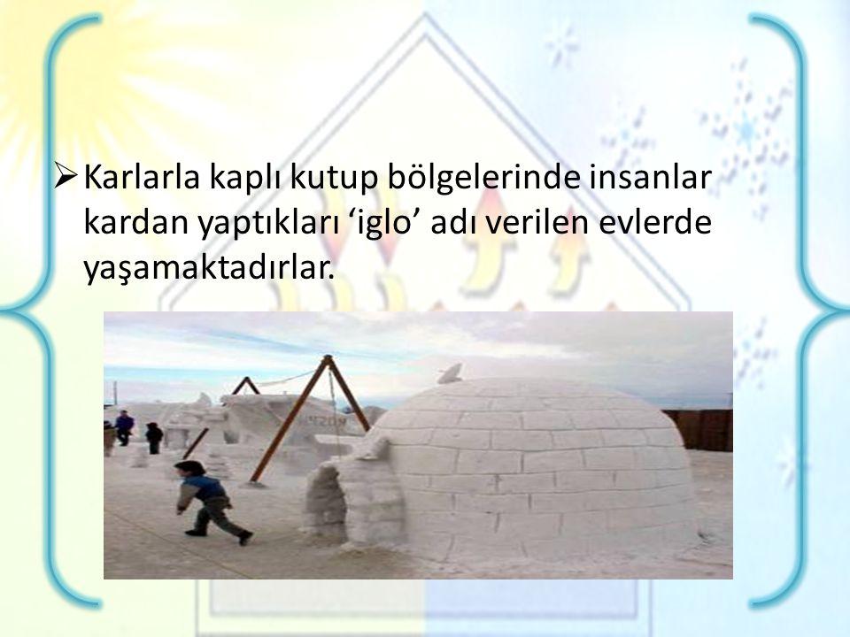  Karlarla kaplı kutup bölgelerinde insanlar kardan yaptıkları 'iglo' adı verilen evlerde yaşamaktadırlar.