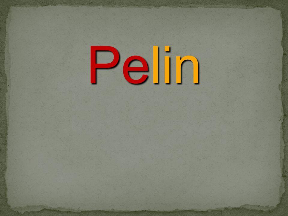 Pelin