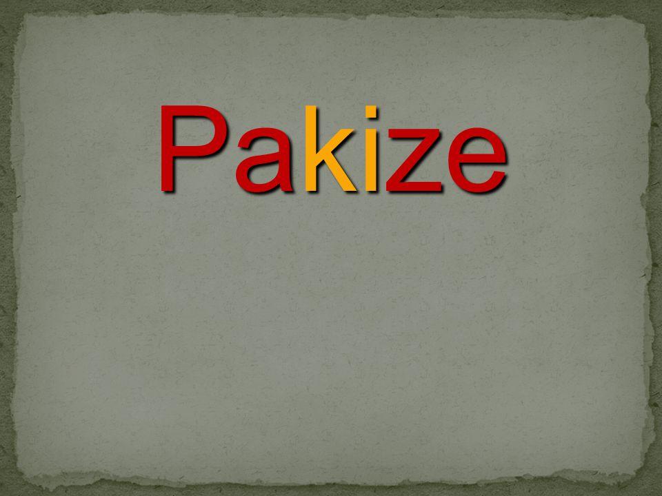 Pakize