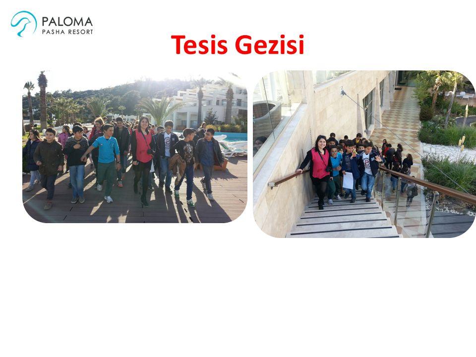 Tesis Gezisi