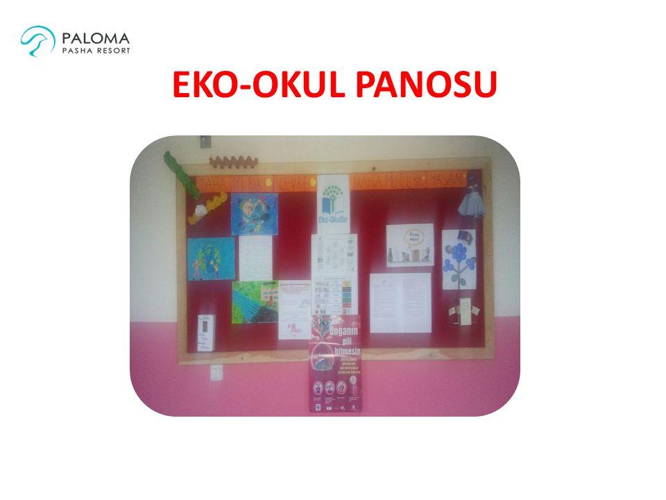 EKO-OKUL PROJESİ Renkli Yazıcı Yardımı