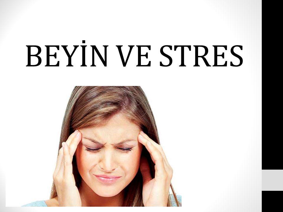 BEYİN VE STRES