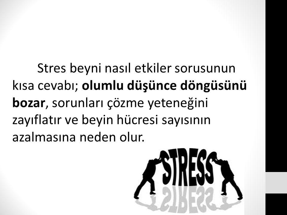 Stres beyni nasıl etkiler sorusunun kısa cevabı; olumlu düşünce döngüsünü bozar, sorunları çözme yeteneğini zayıflatır ve beyin hücresi sayısının azal
