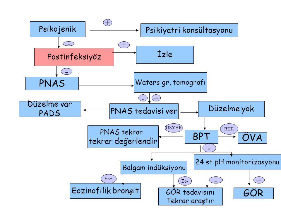 Psikojenik Psikiyatri konsültasyonu Postinfeksiyöz İzle PNAS Waters gr, tomografi Düzelme var PADS PNAS tedavisi ver Düzelme yok PNAS tekrar tekrar değerlendir BPT ÖVA Balgam indüksiyonu 24 st pH monitorizasyonu Eozinofilik bronşit GÖR tedavisini Tekrar araştır GÖR - + - + - USYHR BHR - Eo+ Eo- -+ +