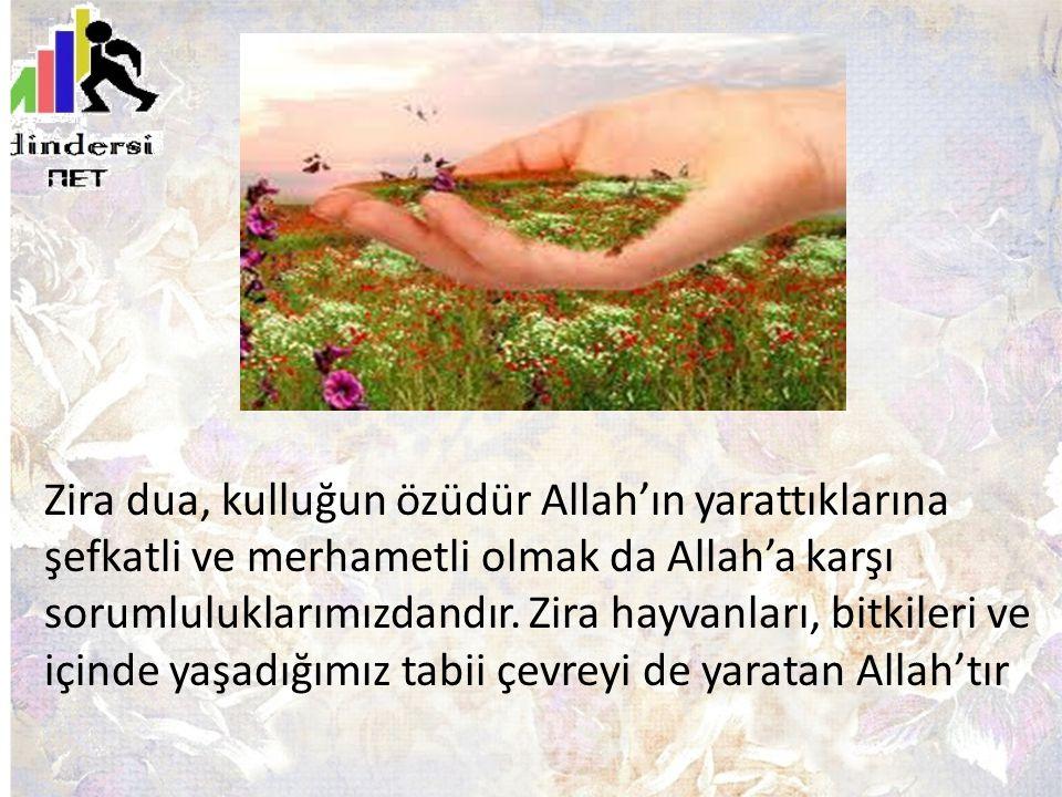 Zira dua, kulluğun özüdür Allah'ın yarattıklarına şefkatli ve merhametli olmak da Allah'a karşı sorumluluklarımızdandır. Zira hayvanları, bitkileri ve